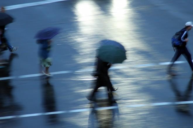 Está lloviendo en Valdivia,¡salgamos! Pedro Flores, gerente de Latitud 40