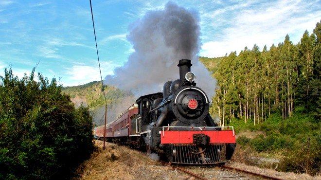 Intendente Montecinos anunció salidas del Tren El Valdiviano para temporada estival