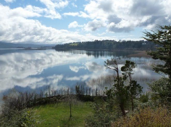 CONAF Los Ríos comenzó el desarrollo de un plan de manejo para el Santuario de la Naturaleza Carlos Anwandter