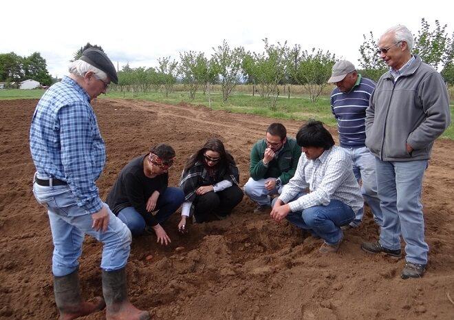 ministerio-agricultura-isemilleros-grupales-papas-los_rios-002