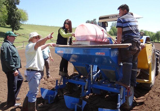 ministerio-agricultura-isemilleros-grupales-papas-los_rios