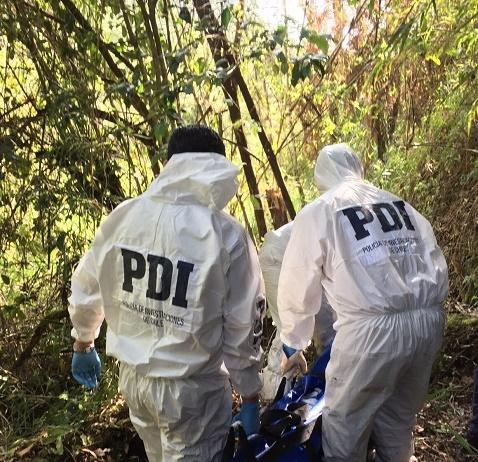 PDI investiga presunto suicidio con arma de fuego en fundo cercano a Llifén