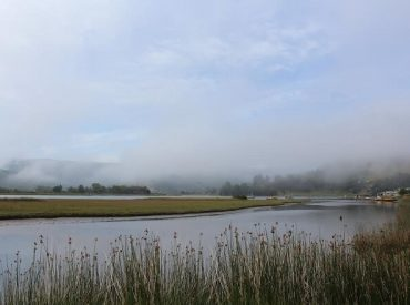 Mujeres de Mehuín anunciaron el comienzo de recorridos fluviales en el humedal del Río Lingue