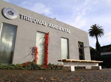 Tercer Tribunal Ambiental rechaza reclamación en contra de proyecto de Línea de Alta Tensión en Ñuble