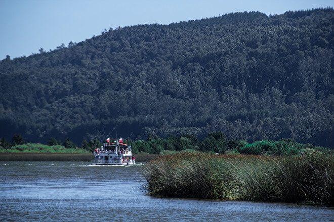 Viaje a Punucapa: vive la conexión con la naturaleza a través de los mágicos ríos de Valdivia
