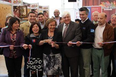 Expo Fiesta del Otoño La Unión recibe a 3 mil personas en su primera versión