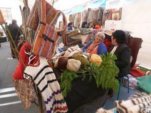 Emprendimiento Mapuche (1)