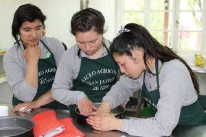 proyecto recetas con historias_liceo san javier_la unión (1)