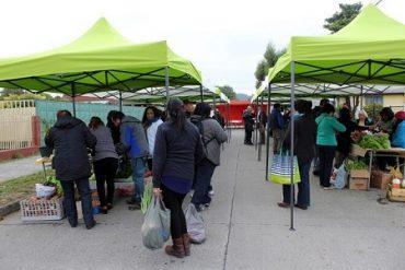 Feria de productos locales en Valdivia