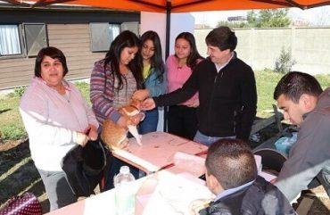 Municipalidad alcanza 1708 esterilizaciones de mascotas en lo que va del 2016