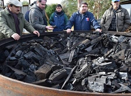 Pequeños campesinos de La Unión apuntan a la sustentabilidad mediante el uso de carbón vegetal