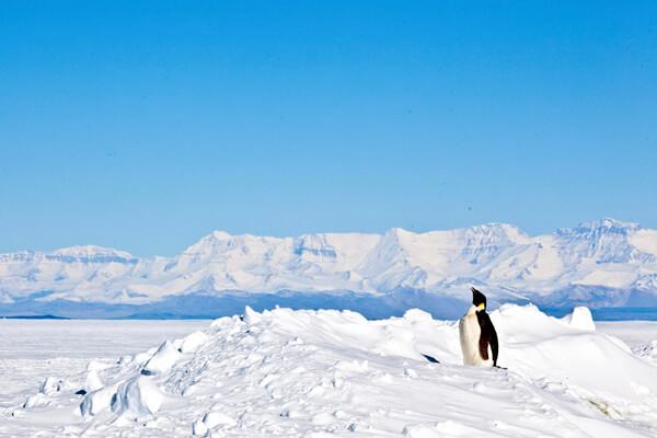 Abierta convocatoria para postular a Feria Escolar Antártica en Los Ríos