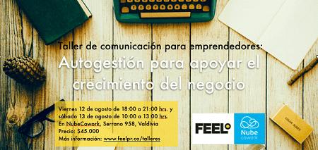 Dictan Taller de Comunicación paraEmprendedores en Valdivia