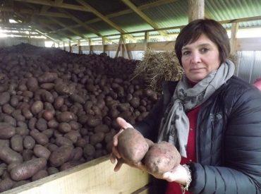 Hortalizas de Mantilhue de Teresa Espinoza: la esencia sustentable del sur