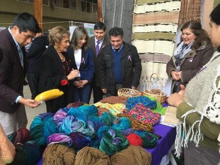 Mujeres del Ranco difunden sus productos en la 1ª Feria de Emprendimientos de Prodemu en La Unión