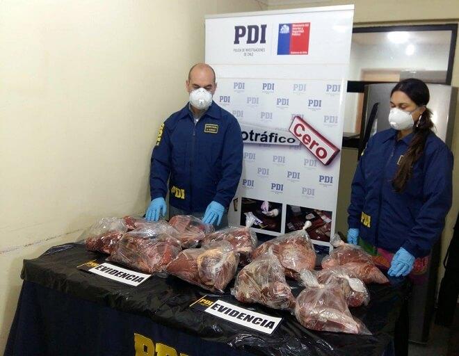 PDI La Unión captura a cuatro individuos por abigeato