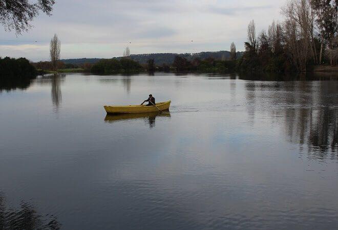 Dirección General de Aguas del MOP expondrá sobreorganización de usuarios en el río Bueno