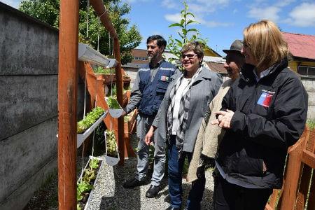 INIA concluyó proyecto que entregó herramientas tecnológicas para producir alimentos frescos y saludables en Osorno