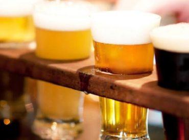Unión Cerveceros de Los Ríos y ChileValora presentan el primer perfil de Maestro Cervecero