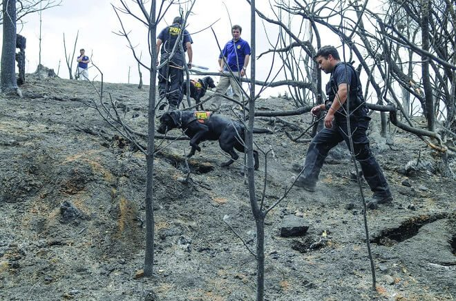 PDI Los Ríos entregó recomendaciones para evitar incendios forestales