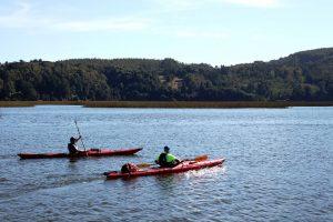 kayak-rio-cruces-1
