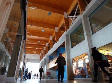 Harboe pide incorporar puntaje adicional a quienes ofrezcan construcción en madera local