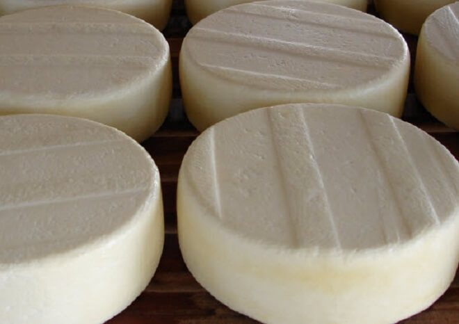 22 alumnas del programa +Capaz aprenden a elaborar quesos