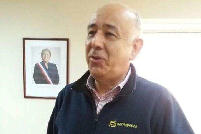 """Rodrigo Valencia, director regional Sernapesca:""""He atendido a todas las empresas regionales y todas han podido exportar sin inconvenientes"""""""