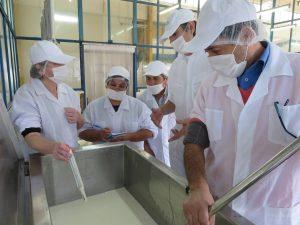 taller-evaluacion-sensorial-mejora-rendimiento-quesos-valdivia