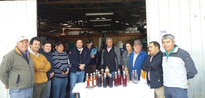Emprendedores de Cayucupil conocen exitosos productores de vinagre de manzana de La Araucanía