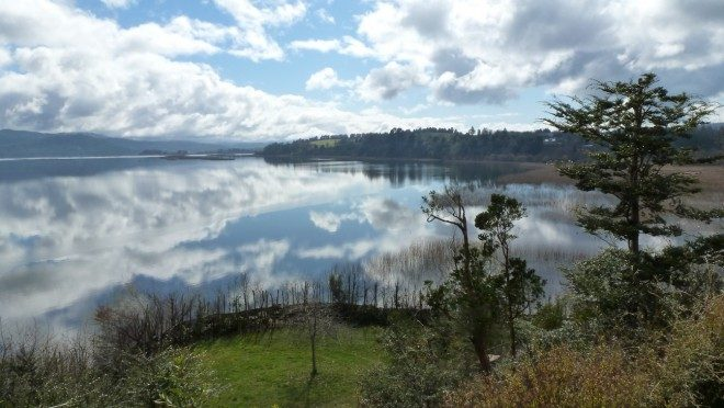 Municipio de Valdivia firma convenio de colaboración con Asociación Comunidad Humedal