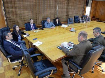 Intendente y Cámara de Comercio de Puerto Montt dialogan sobre desafíos para la industria turística local