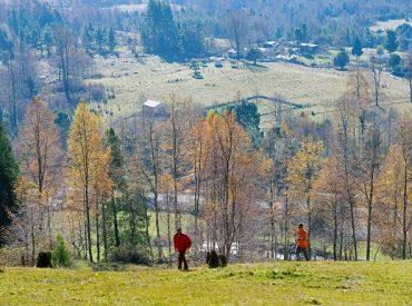 Panguipulli y Lago Ranco ganan primer concurso de Programa de Mejoramiento Urbano para Zonas de Interés Turístico
