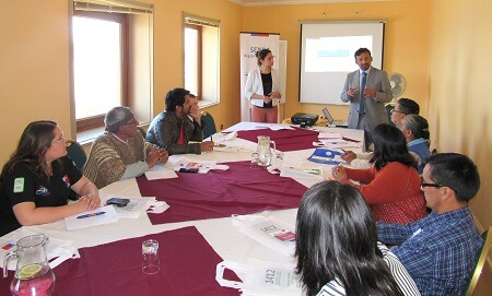 Representantes de diversas organizaciones sociales son parte de COSOC de Senda Los Lagos