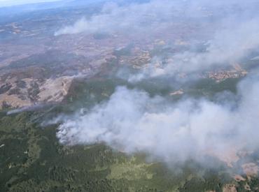 Incendios forestales causan pérdidas de más de 40 mil hectáreas de bosques para asociados de Corma