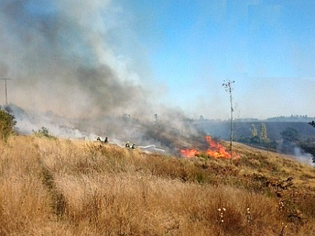 Gobernación de Chiloé llama a evitar quema de pastizales para prevenir incendios forestales