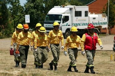 ARAUCO aumenta recursos para combatir incendios y anuncia medidas de reconstrucción