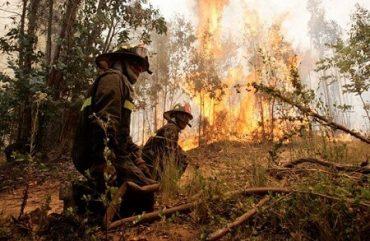Autoridad regional del Trabajo hace llamado a respetar la ley 20.907 que protege a los trabajadores que ejercen como bomberos