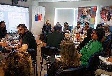 Se constituye Mesa Intersectorial de Salud Mental para Emergencias en Concepción
