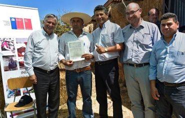 Más de 100 familias de pequeños agricultores afectadas por incendios forestales recibieron apoyo en la Región del Biobío