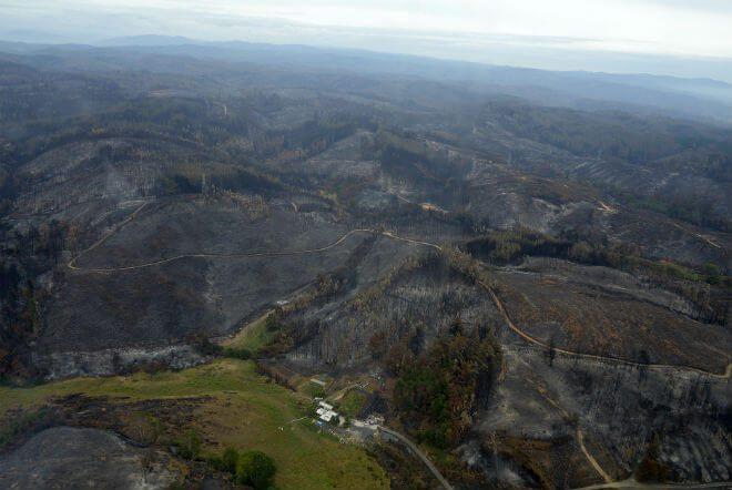 Fenasitranfor denuncia ideologización de discusión en torno a incendios forestales