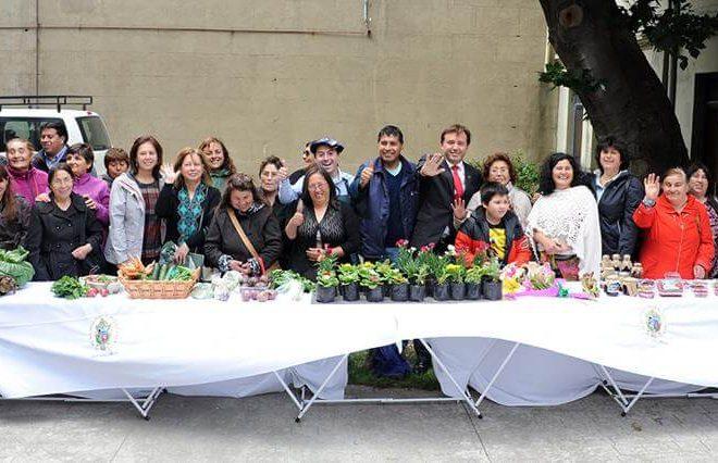 Diversas actividades se realizaron durante el fin de semana en Punta Arenas para promover la vida saludable en la comunidad
