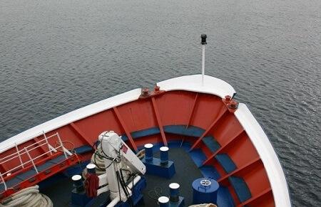 Refuerzan medidas de seguridad en el transporte de salmónidos