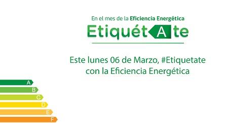 En Puerto Aysén se conmemora el Día Mundial de la Eficiencia Energética