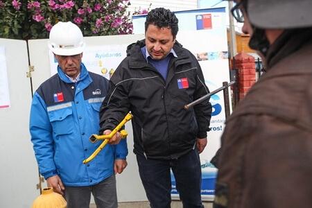 Realizan campaña de cuidado de grifos en Punta Arenas