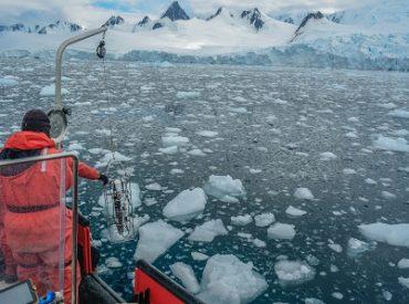 ¿Te gustaría integrar una expedición a la Antártica?