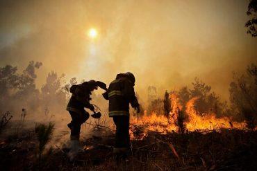"""Diputado Berger (RN) en comisión investigadora de Incendios Forestales: """"Lo que hay es insuficiente ante la amenaza mayor, ese 1% de siniestros capaz de devastar a medio Chile"""""""