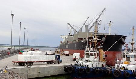 Exportaciones en La Araucanía registra alza del 1,1% en doce meses