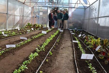 Escuela Llaima inaugura invernadero para sus alumnos