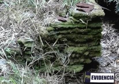 PDI Valdivia y Consejo de Monumentos descubrieron importante sitio arqueológico